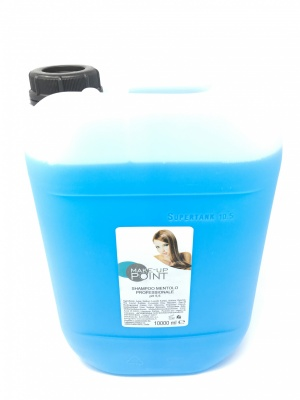 Make-Up Point Shampoo Mentolo Professionale pH 5.5 10000ml